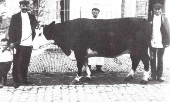 1937_slager_maarse