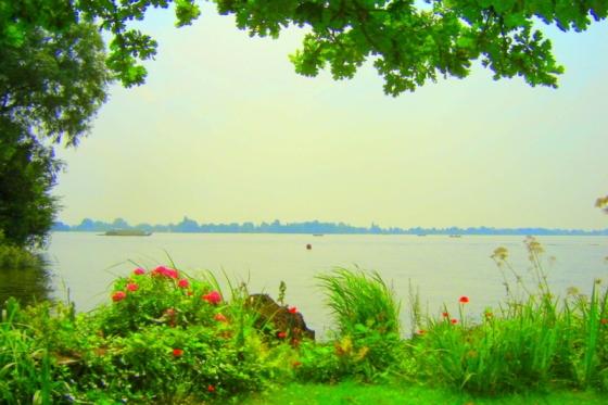 2008_eiland_zomer_2008