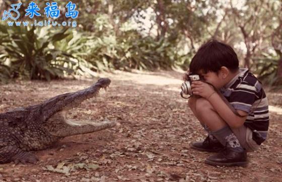 Kind_neemt_foto_van_krokodil
