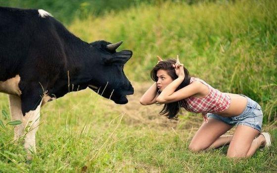 Volgens mij ben jij geen stier