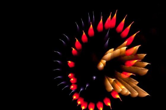 long-exposure-fireworks-like-youve-never-seen-before-david-johnson-3