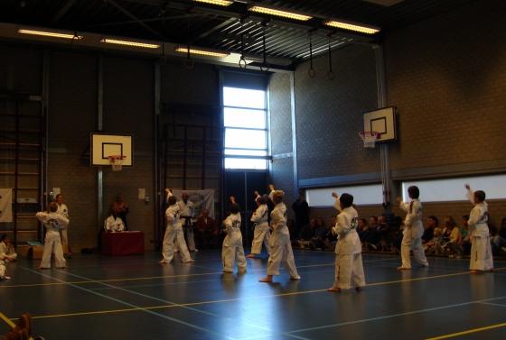 teakwondo 3