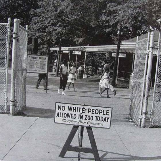 No-white-people-allowed-in-zoo-today-1950s