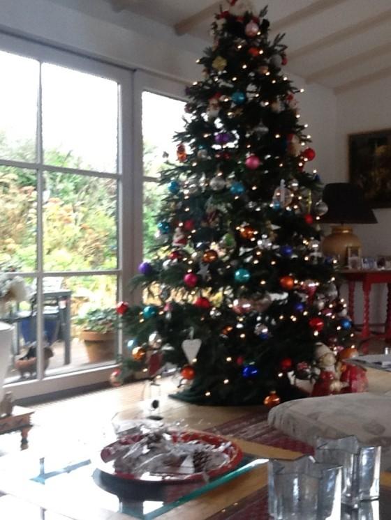 de 2019 kerstboom.jpg