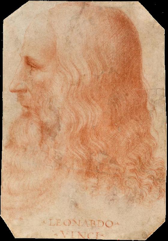 800px-Francesco_Melzi_-_Portrait_of_Leonardo.png